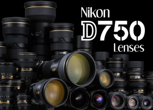 what lens is best for the nikon d750 the d750 can use variety of nikon f mount lenses for best performance a fx full frame format lens is recommended
